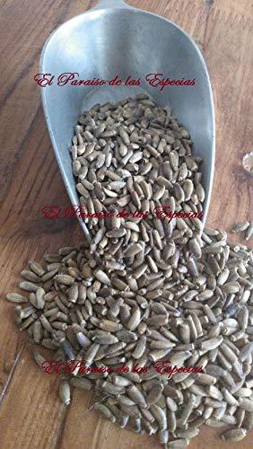 semillas de cardo mariano como tomarlas