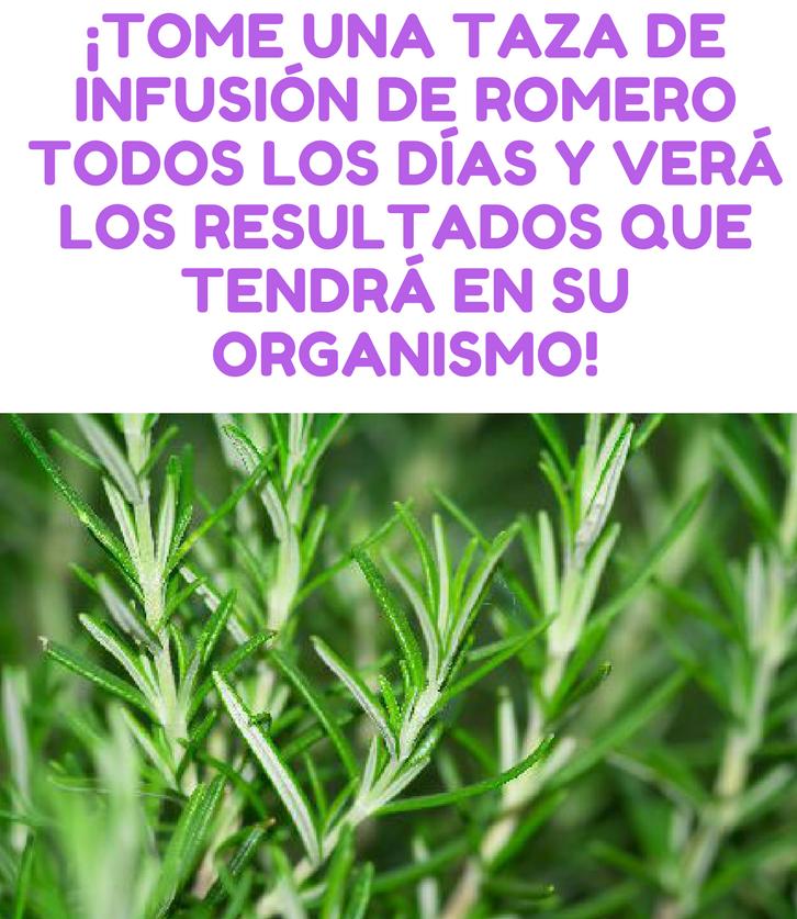 infusion romero anginas
