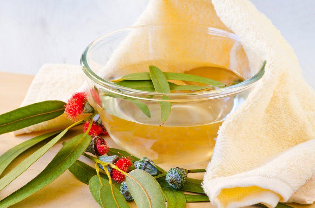 infusion de eucalipto y limon