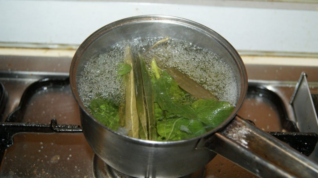 la infusion de hojas de olivo para que sirve