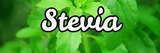 Infusión de stevia