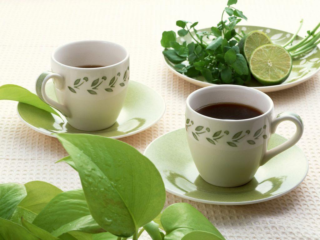 infusión de cilantro y perejil