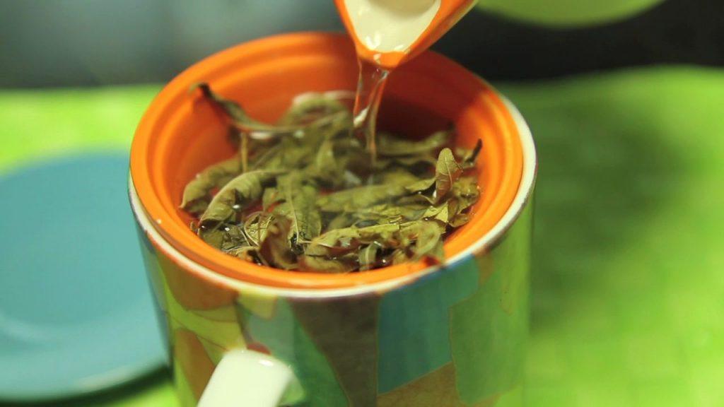 preparar infusion hierba luisa