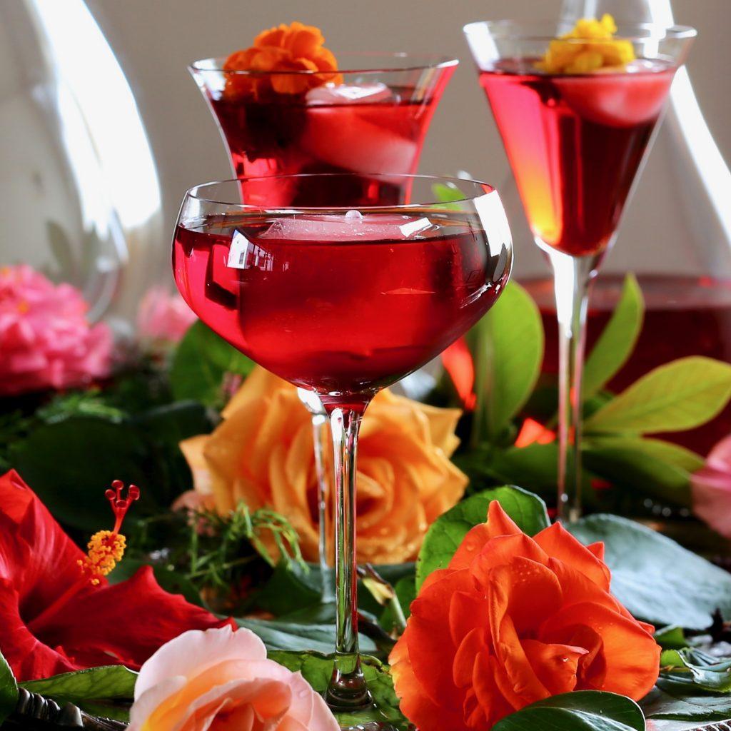 infusion du hibiscus