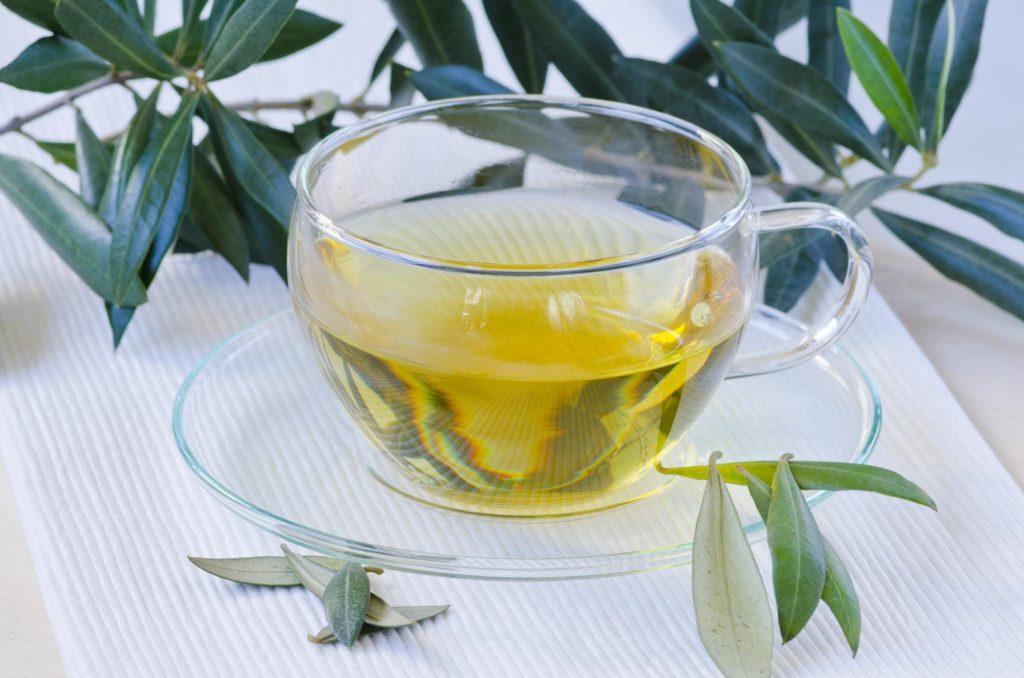 infusion de hojas de olivo para hipertension